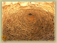 Εσωτερικό Θραψανιώτικου φούρνου χτισμένου με κεραμικά